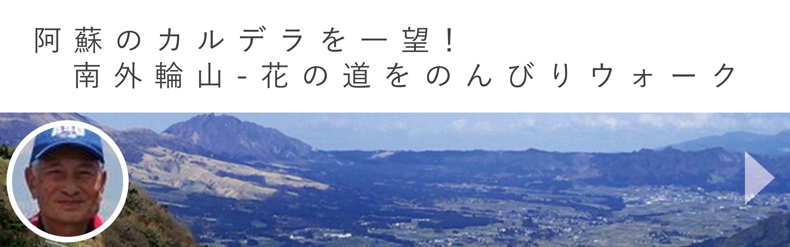 阿蘇のカルデラを一望! 南外輪山-花の道をのんびりウォーク|aini