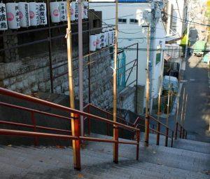 【四ツ谷・荒木町】東京スリバチ学会の会長とめぐるスリバチの聖地
