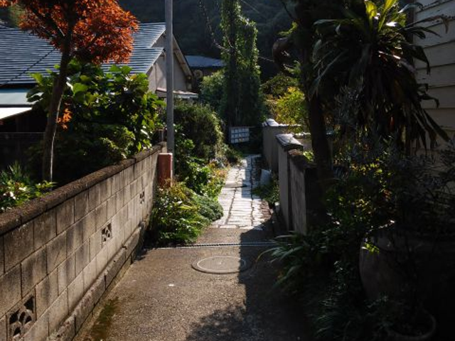 鎌倉の裏道