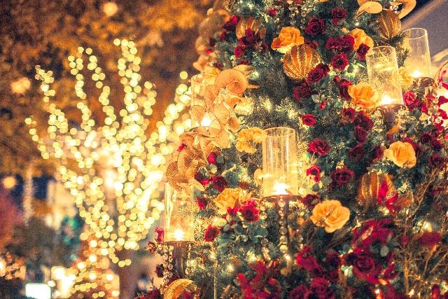 冬にカップルで行きたい【関東】おすすめデートス …