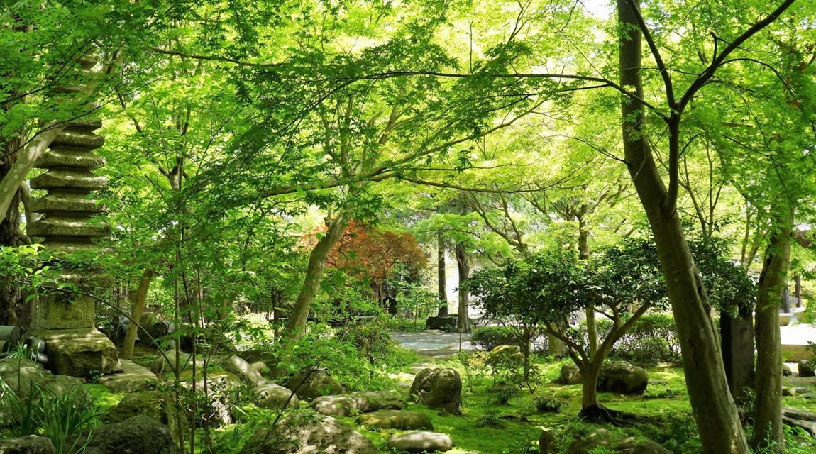 鎌倉の自然の様子