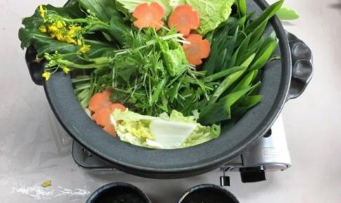 新鮮野菜鍋