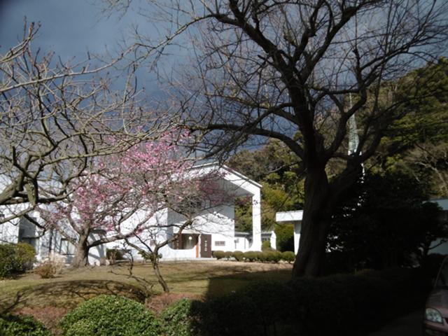 モンタナ修道院