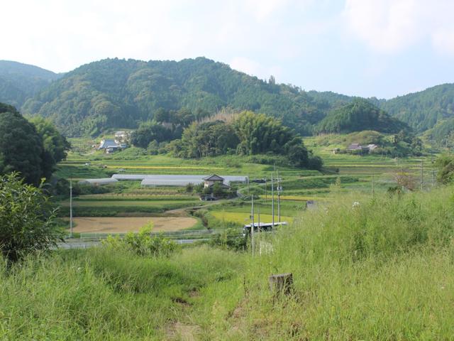 山添村の風景