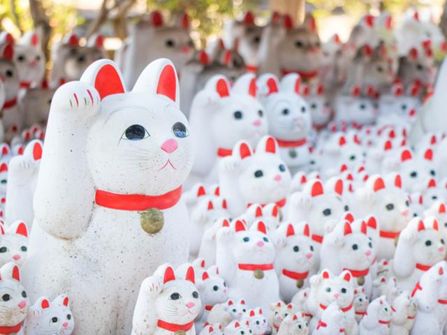 豪徳寺の猫
