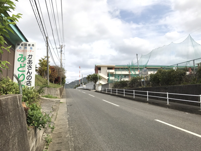 徳之島体験1